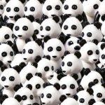 A sok cuki panda között egy kölyökkutya is ott figyel: rájössz, merre bujkál?