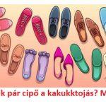 Ez a rejtvény még sok nagyokost is lóvá tesz: te rájöttél, melyik pár cipő a kakukktojás?
