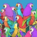 Megtalálod a szépséges pillangót a színpompás papagájok között? 25-ből csak 2 ember veszi észre rögtön: