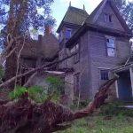 Kirándulás közben pillantotta meg az erdő mélyén megbújó régi házat: belépett, és alig bírt továbbmenni