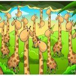 A sok zsiráf között egy kígyó is elbújt: rátalálsz?