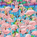 Ha 15 másodpercen belül megtalálod a lányt a flamingók között, szuper a látásod